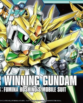 High Grade Star Winning Gundam Box