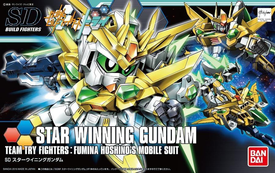 High Grade Star Winning Gundam Box