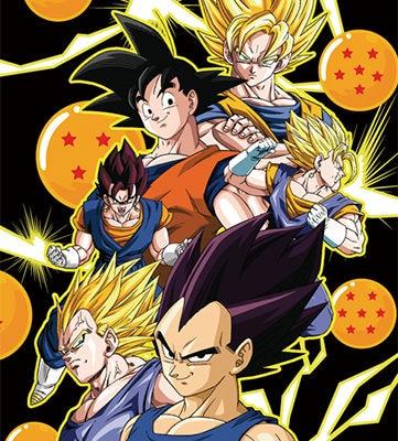 Goku and Vegeta Wall Scroll