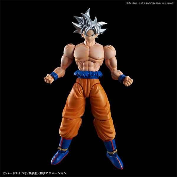 Goku Ultra Instinct Pose 1