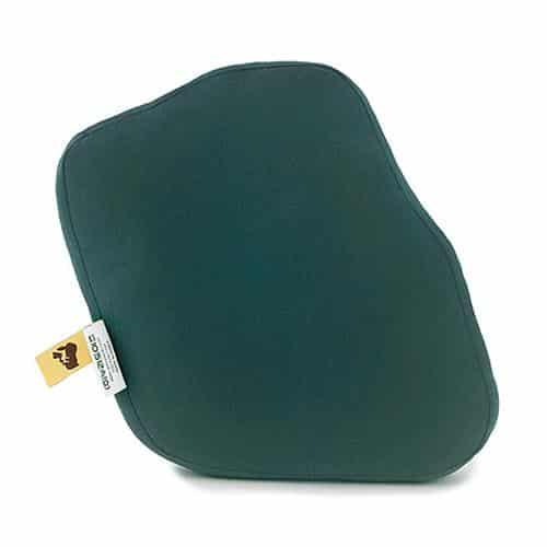 Bulbasaur Cushion Pose 3