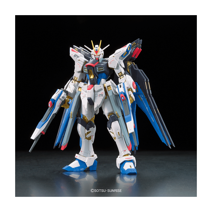 Real Grade Strike Freedom Gundam Pose 1